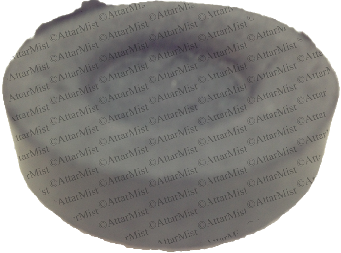 Charcoal Disc